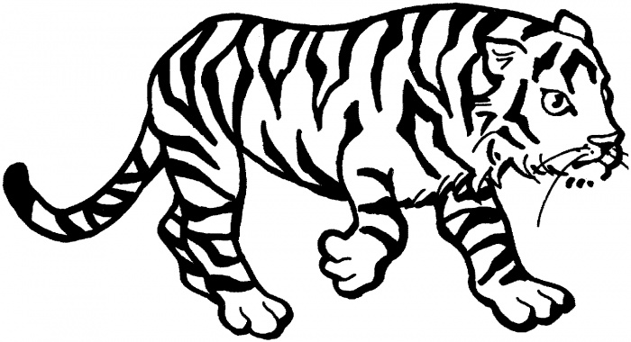 printable pictures of tiger page,printable,coloring pages