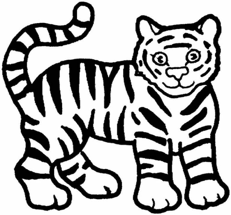 printable tiger coloring pages,printable,coloring pages