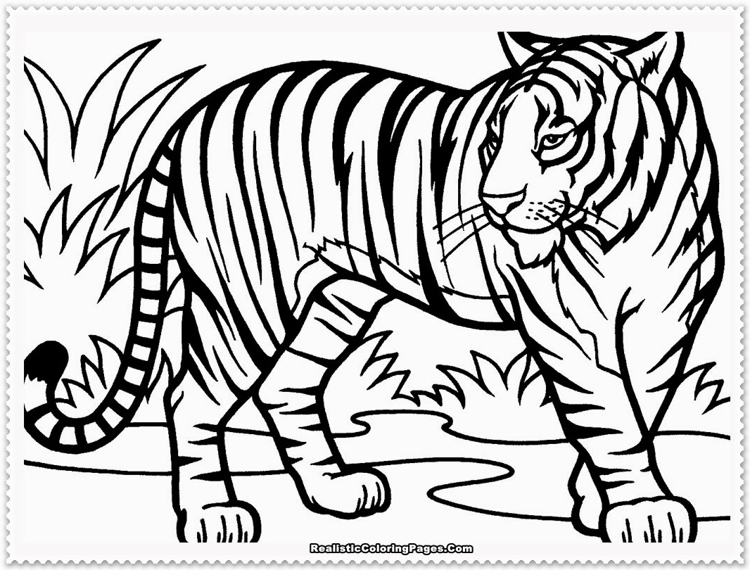 tiger coloring pages,printable,coloring pages