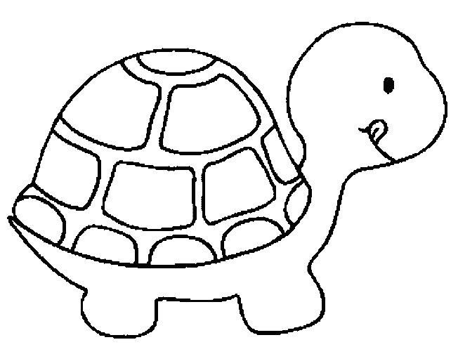coloring pictures turtleprintablecoloring pages