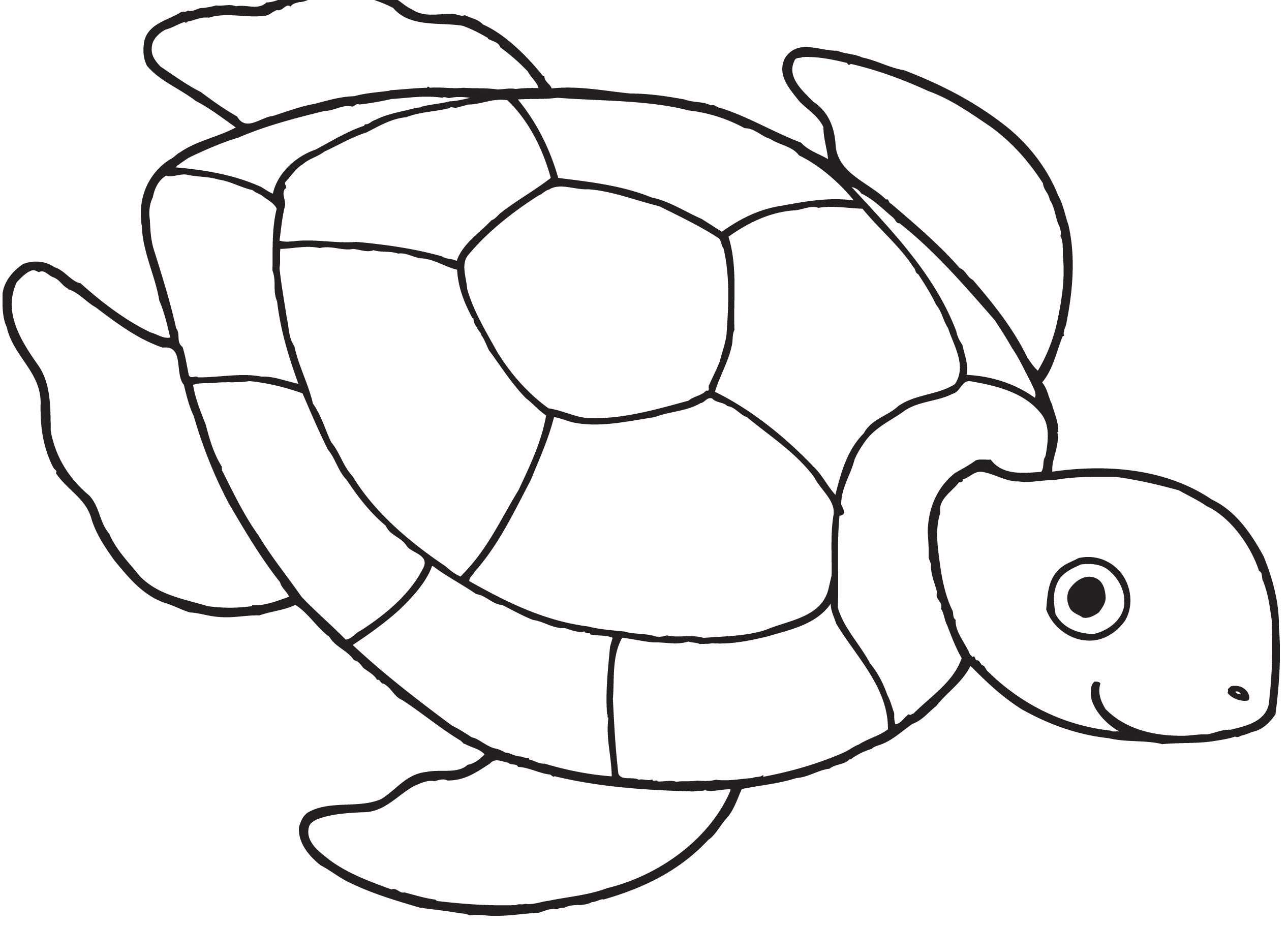 29 coloring pages of turtle print color craft for Turtle coloring pages