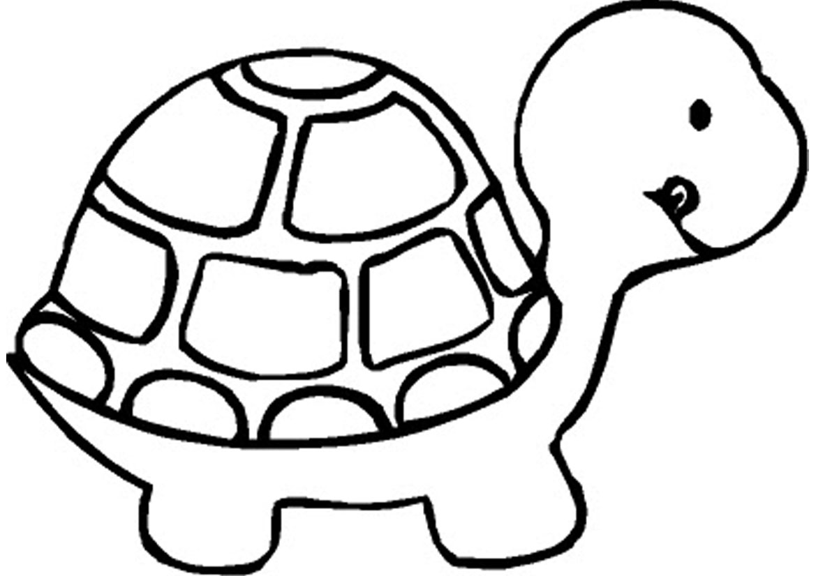 turtle coloring pages,printable,coloring pages
