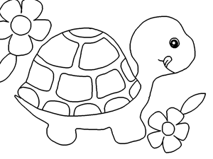 29 coloring pages of turtle | Print Color Craft