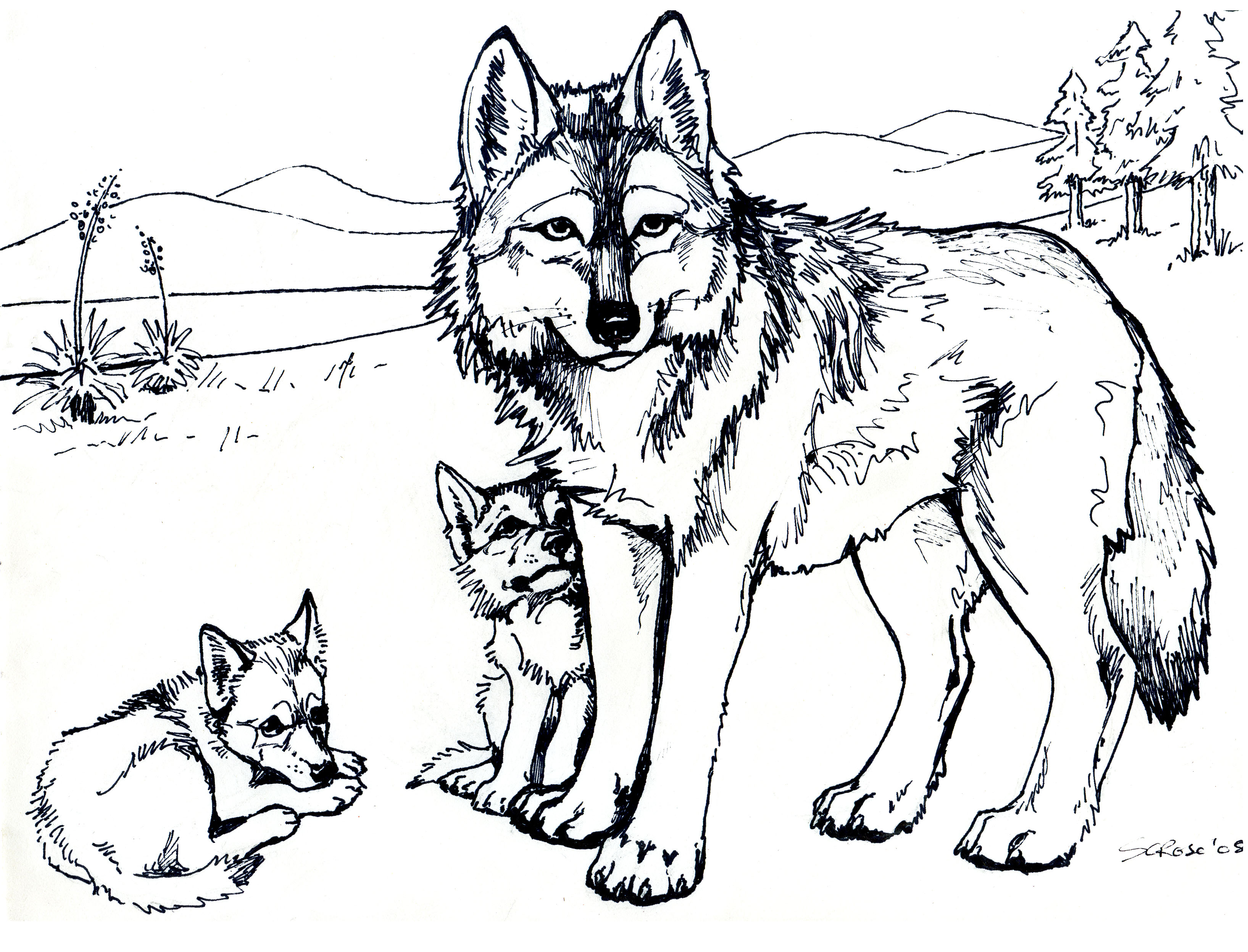 coloring pages of wolf,printable,coloring pages