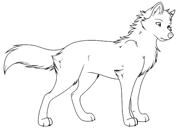 wolf coloring pages 12,printable,coloring pages