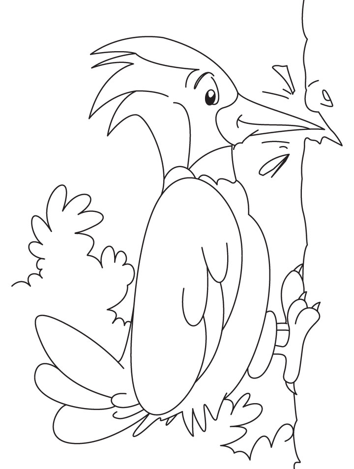 kids coloring pages woodpecker,printable,coloring pages
