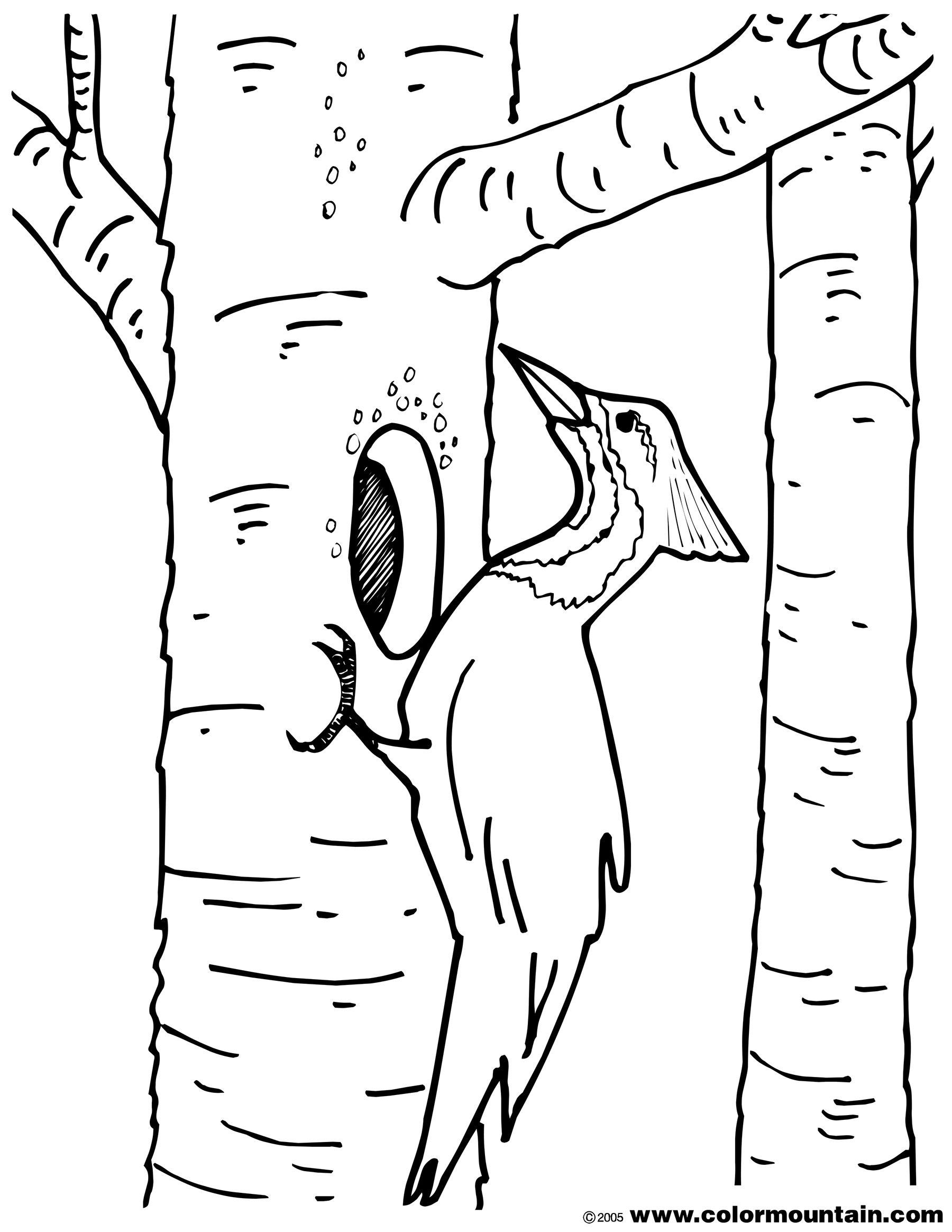 printable woodpecker coloring pages,printable,coloring pages