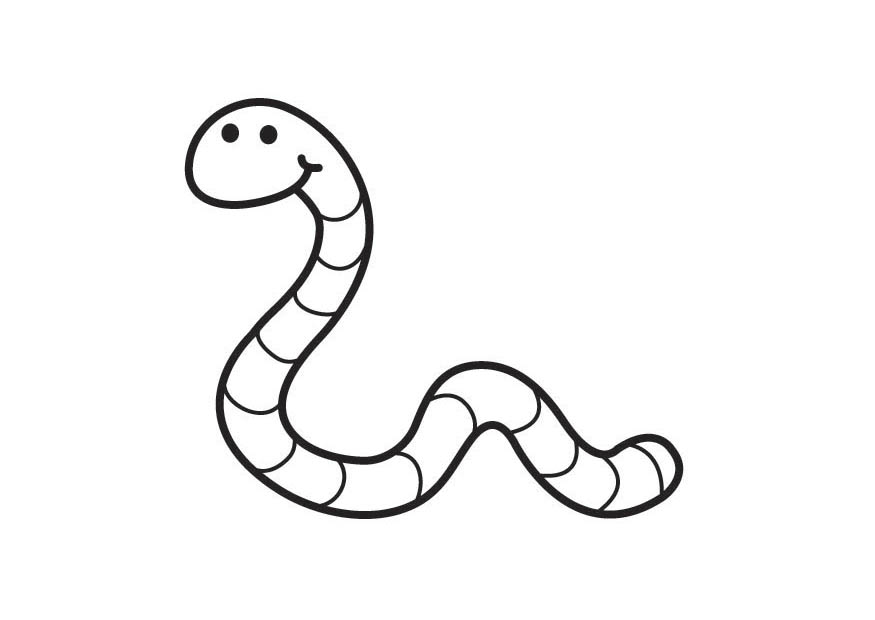 worms coloring pages - photo#2