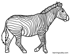 zebra coloring page,printable,coloring pages
