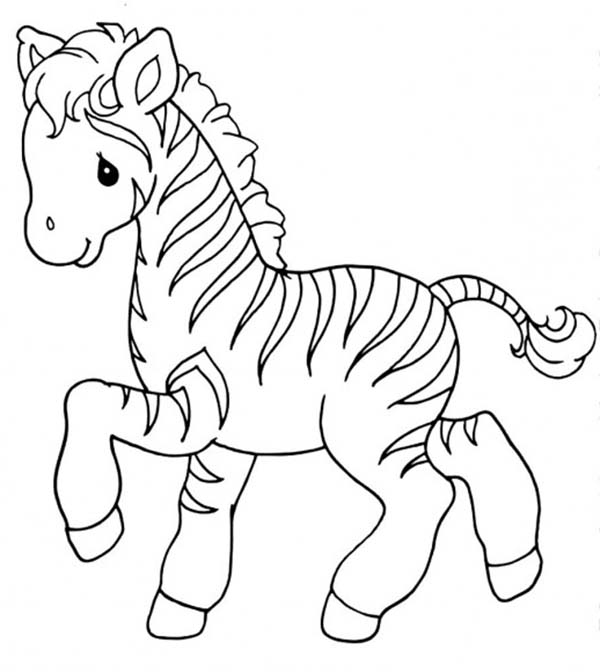 zebra coloring pages 13,printable,coloring pages