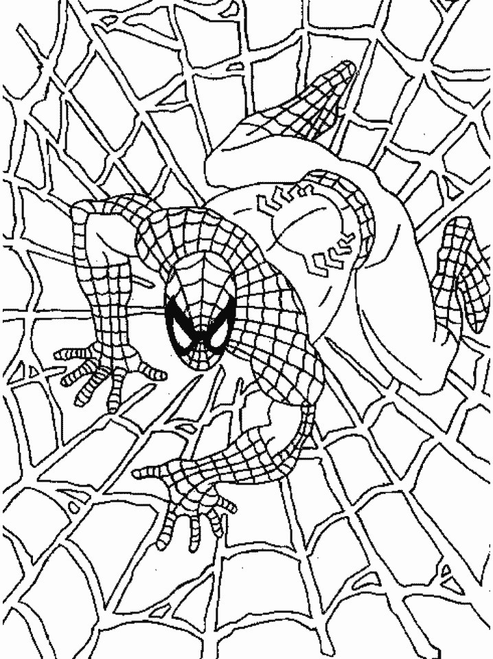 spiderman coloring pages 13,printable,coloring pages