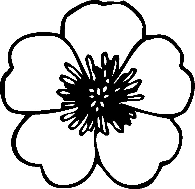 Real Flower Coloring Pages PrintableFlowerPrintable Coloring