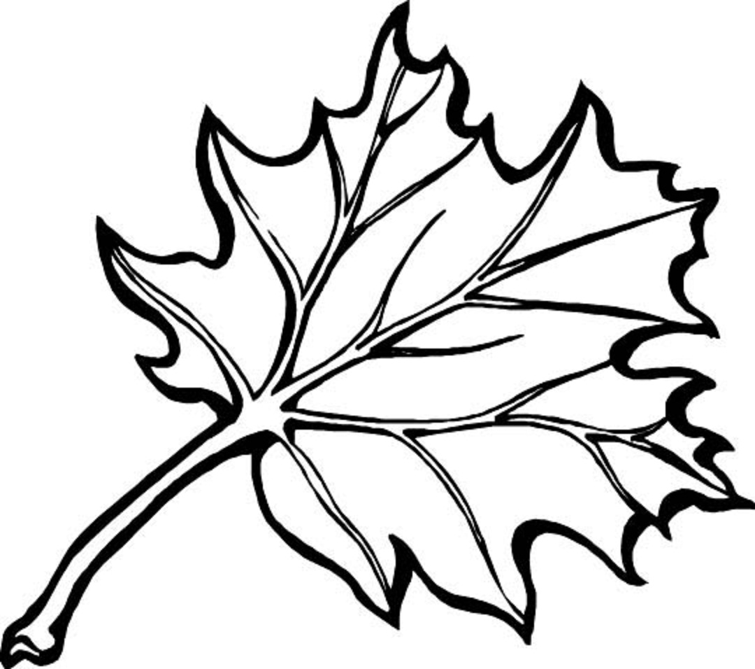 kids coloring pages leaf,printable,coloring pages