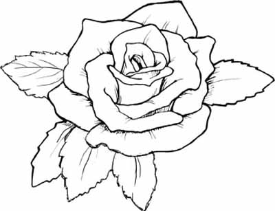 12 roses coloring pages for kids