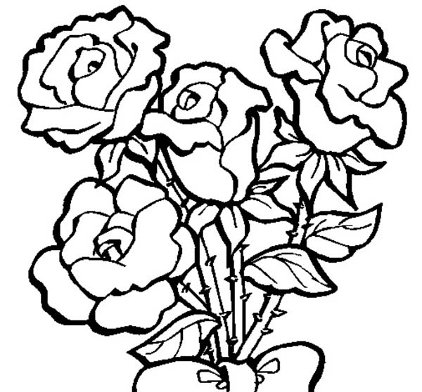 roses coloring pages 14,printable,coloring pages
