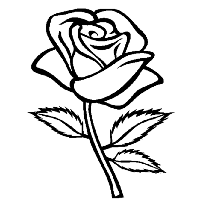 roses coloring pages printable,printable,coloring pages