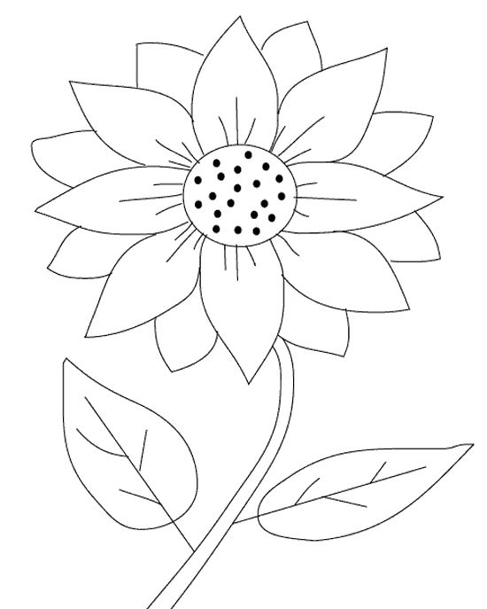 coloring pages of sunflower,printable,coloring pages