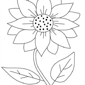 sunflower coloring pages 14,printable,coloring pages
