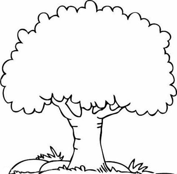 Free Coloring Pages Of Tree And Flowers Tree Coloring Pages Printable