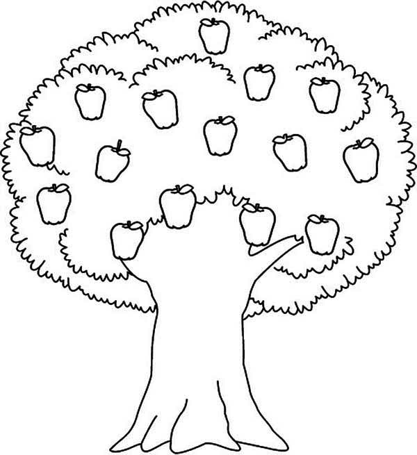 tree coloring pages printable,printable,coloring pages