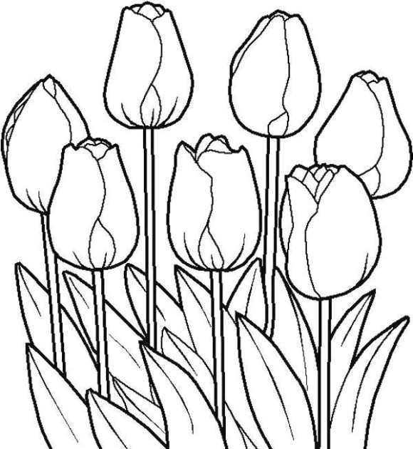 tulip coloring pages free coloring pages a logo version of tulip