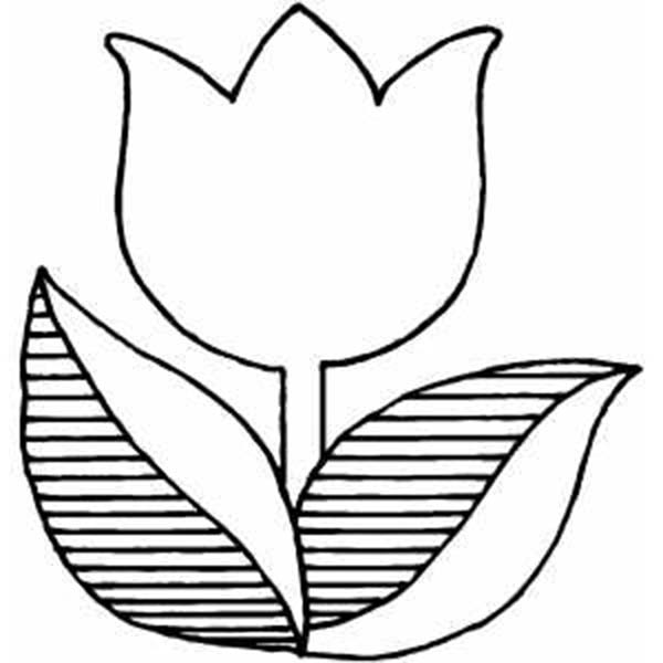 printable pictures of tulip page,printable,coloring pages