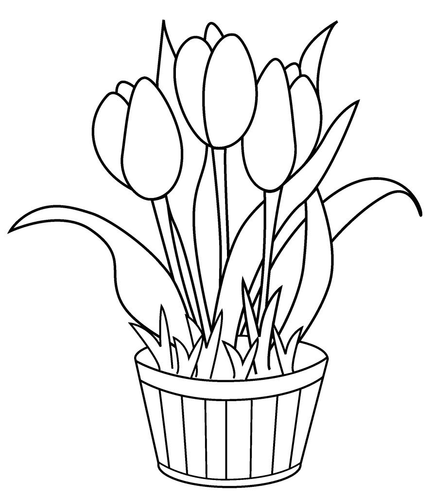 tulip coloring page,printable,coloring pages