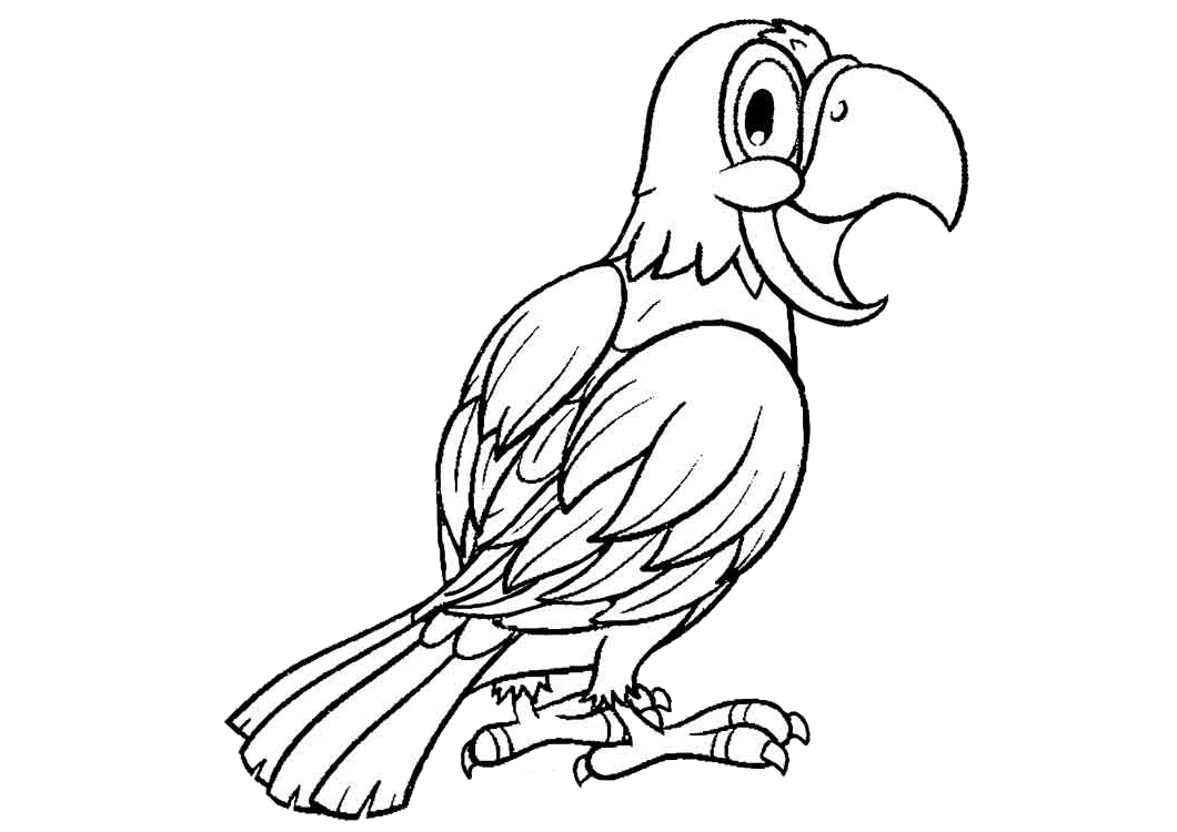 Feathers Coloring Pages Coloring Page Coloring Pages (With images ... | 750x1060