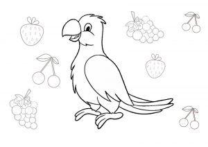18 Parrot Coloring Pages Pet Birds Printable PDF