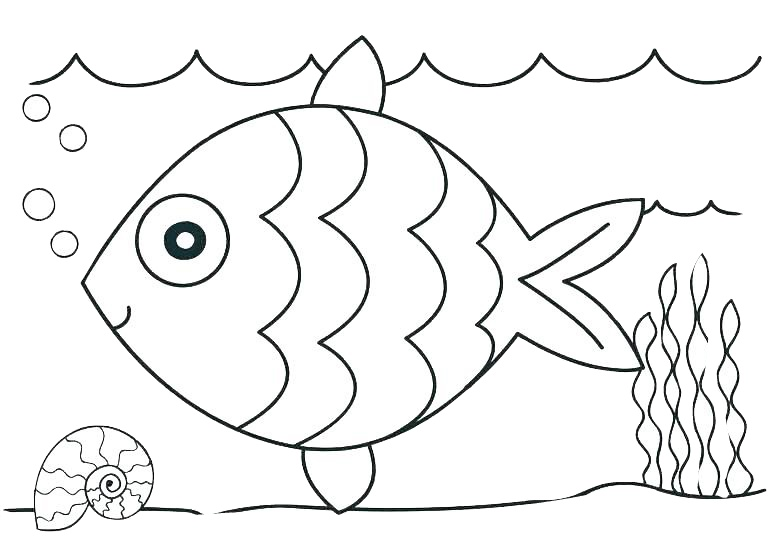 Easy to Draw fish and Shell Ocean Coloring pages for Kindergarten