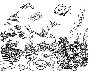 Free Printable Underwater Animals Shark, Turtle Manta ray, Clownfish Ocean Coloring Pages