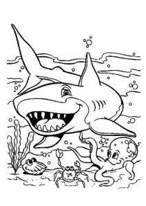 Funny Looking Shark Ocean Coloring Pages Underwater Predators