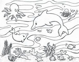 Printable Dolphin Swordfish Free Underwater and Ocean Life Coloring Pages