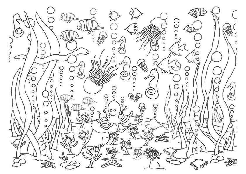 Underwater Animals and Ocean Coloring Pages for Adult ...