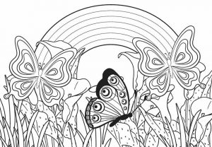 Beautiful Butterflies in Garden Rainbow Coloring Pages