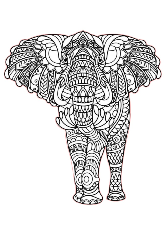 Elephant Zentangle Adult Coloring Pages
