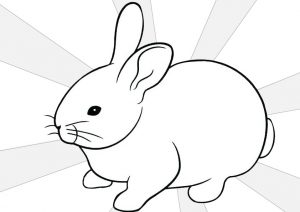 Coloring Pages of a Sweet and Lovely Rabbit With a Short Fluffy Tail