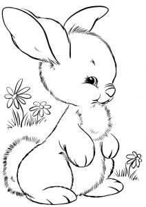 Cute looking Fluffy Little Rabbit Coloring Pages