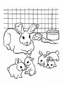 Mother Rabbit Doe with the New Born Kits Rabbit Coloring Pages