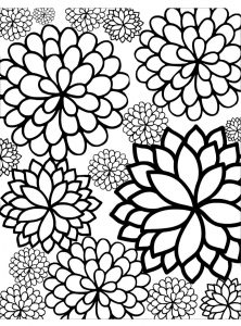 Blooming Blossoms Coloring Pages for Adults