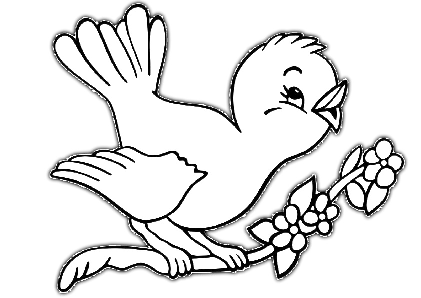 Cute 3D Like Bird Coloring Pages