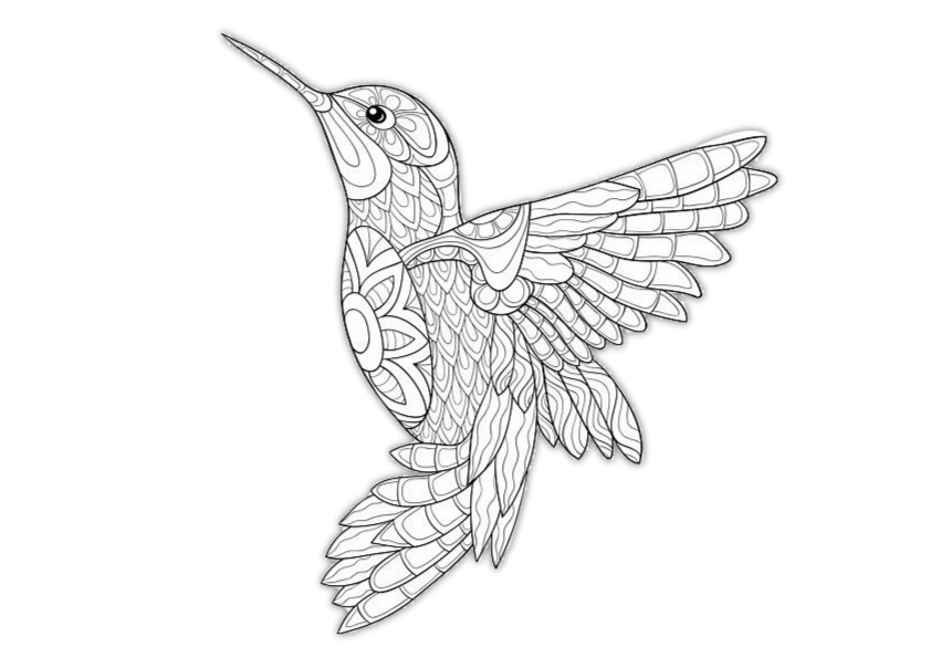 Hard Bird Coloring Pages For Adults Coloring Page For Adults ... | 595x842