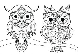 Mandala Birds Hard Owl Coloring Pages for Adults