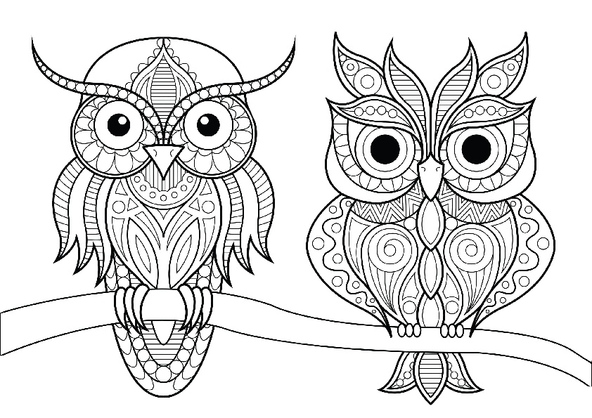 Adult coloring page an humming-bird | Bird coloring pages ... | 595x842