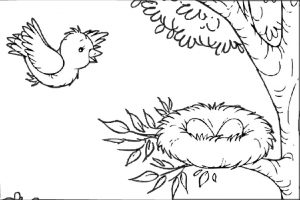 Mommy Bird Back to Her Nest with Eggs Birds Coloring Pages