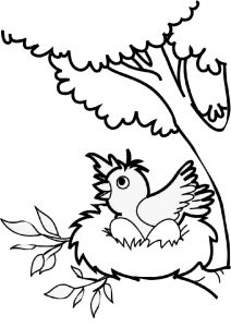 Preschool Easy Draw and Color Bird Coloring Pages