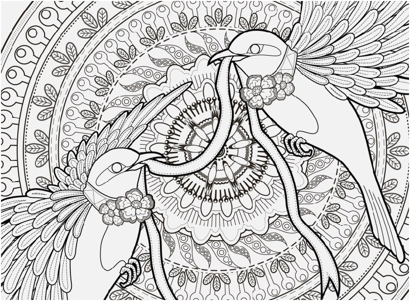 Printable Birds Coloring Pages for Adults