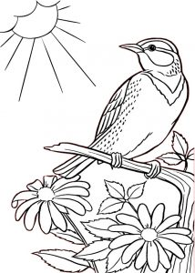 Sparrow Bird on a Tree with Lovely Flowers Printable Coloring Pages