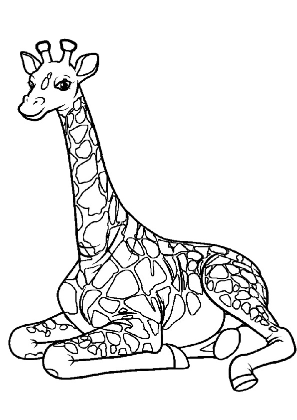 Tallest Mammal Giraffe Taking a Rest Coloring Pages