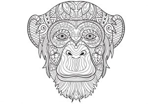 Animals Monkey Coloring Pages for Adults